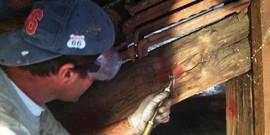 DMA Construct sprl - Traitement des bois